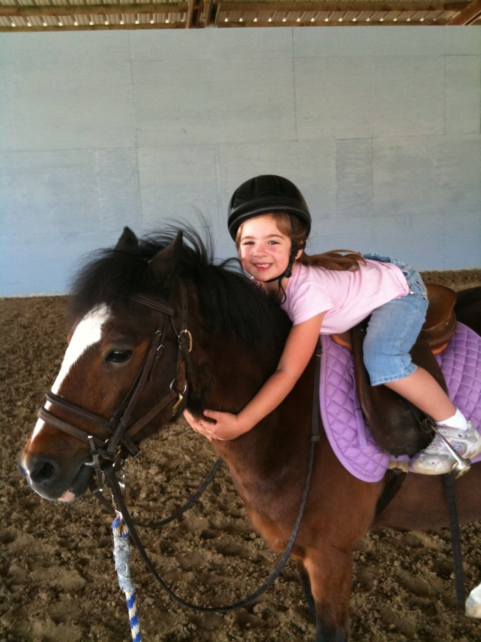 toddler-horse