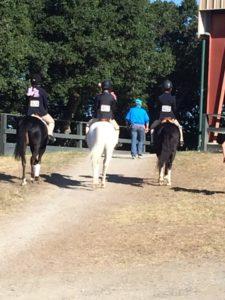 Woodside 2016 3 Ponies